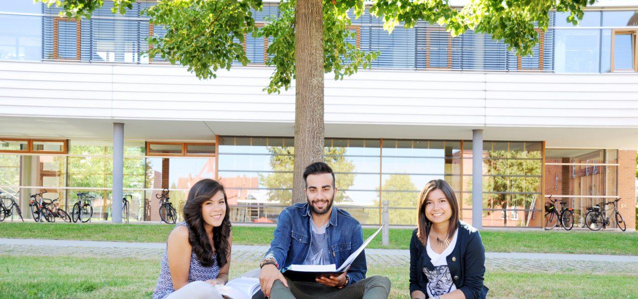 Drei Studenten sitzen auf einer Wiese vor einem Baum und halten Ordner und Bücher in der Hand und unterhalten sich.